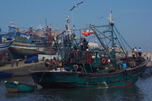 Fischerboote in Essaouira