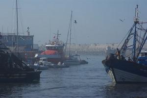 Chiloé im Hafen von Essaouira (Suchbild)